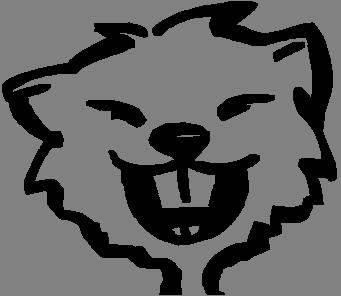 Verein Fasnacht Bennau